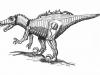 06 - Bionical velociraptor/Bionický velociraptor